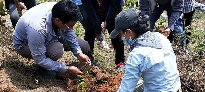 Reforestation in Peru!
